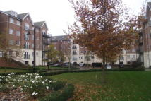 property to rent in Viridian Square