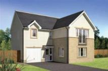 4 bed new home for sale in Meadow Bank, Alloa...