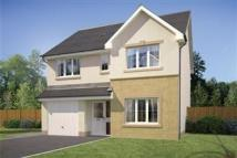 new house in Meadow Bank, Alloa...