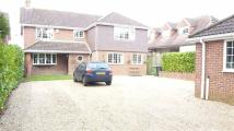 Detached home in Frogmore Lane, Lovedean...