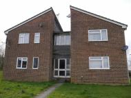 1 bed Studio apartment to rent in Reedmace Close...