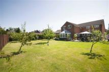 5 bed Chalet in Idsworth Road, Cowplain...