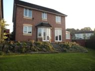Detached property to rent in Newton Vale, Chapeltown...