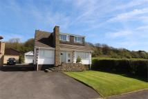 Detached property for sale in Heaton Avenue, Bradshaw...