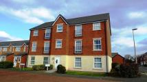 Flat to rent in 53 Naylor Green...