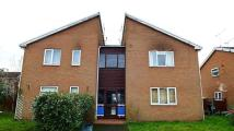 Flat to rent in Wenlock Way, Saltney...
