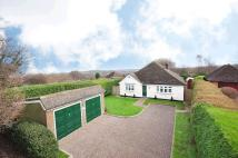 Detached Bungalow for sale in The Ridgewaye...