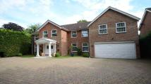 6 bed Detached property in Autumn Walk, Maidenhead...
