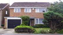 4 bedroom Detached property to rent in Moor End