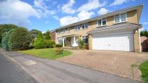 Detached property in Cannock Close