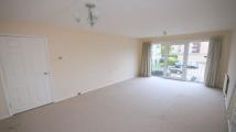 Flat to rent in Riseley Road