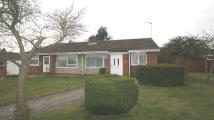 2 bed Bungalow to rent in Hungerford Drive
