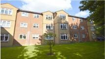Corfe Apartment to rent