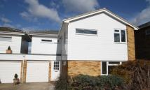 Detached house to rent in Wolf Lane, Windsor