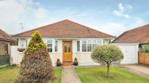 3 bed Bungalow to rent in Bellview