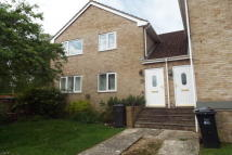 2 bed Flat to rent in Sycamore Square, Chard...