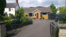 Detached Bungalow for sale in Whitton, Knighton, Powys