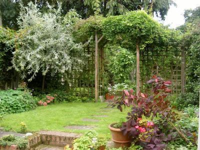 Established garden to rear