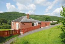 4 bed Detached Bungalow in Knighton, Powys