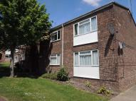 Flat to rent in Thorpe Walk, COLCHESTER...