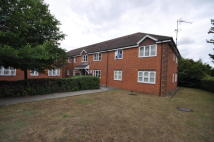 2 bed Apartment to rent in Pear Tree House...