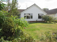 Detached Bungalow in CATTSFIELD, Stutton