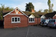 Semi-Detached Bungalow in Lexden