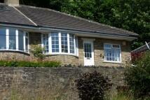 Semi-Detached Bungalow to rent in Baildon Road, Baildon...
