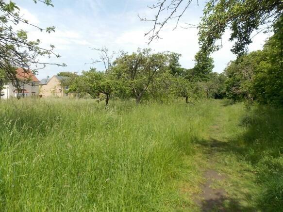 Orchard Walks