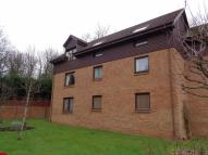 Flat to rent in Links Road, Lundin Links...