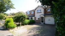 3 bed semi detached house in Highfield Avenue...