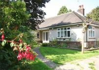 3 bed Detached Bungalow to rent in Kilfield Road...