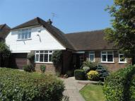 3 bed Detached Bungalow for sale in Maple Walk...