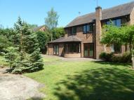 6 bedroom Detached house to rent in Cassandra Close...