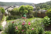 Gunnislake Cottage to rent