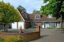 4 bedroom Detached property in Yoevil Road, Sandhurst