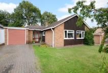 Detached Bungalow to rent in Forest Hills, Camberley