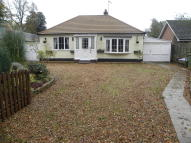 2 bed Detached Bungalow for sale in Litcham Road...