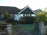 Tott Yew Road Semi-Detached Bungalow to rent