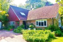 The Old Orchard Bungalow Caburn Way Detached Bungalow to rent