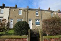 property to rent in Twizell Avenue, Blaydon-On-Tyne, NE21