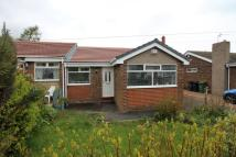 2 bed Semi-Detached Bungalow to rent in Brinkburn Close...