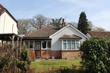 Detached Bungalow for sale in Oak Avenue, Ickenham...