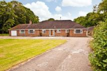 Detached property for sale in Eversleigh