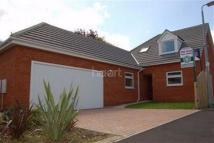 Detached home in Marston Moretain