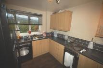 Terraced home to rent in 14 Hamilton Road ...