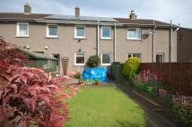 3 bed Terraced home to rent in 23 Orchard Park...