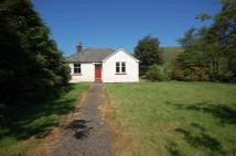 Nether Fingland Cottage Detached Bungalow to rent
