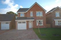 4 bedroom Detached home to rent in 58 The Beeches...
