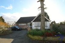 4 bedroom Detached Bungalow to rent in Singlewell Road...